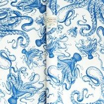 Caskata's Blue Lucy Gift Wrap at Indigo