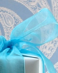 blue gift wrapping (sm)