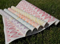 Field gift wrap by May Day Studio