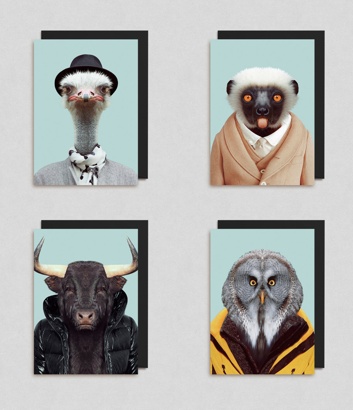 Zoo Portraits cards from Lagom Design