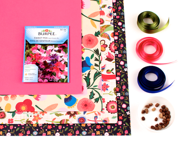 DIY Seed Packets (materials| Corinna Wraps