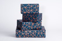 1. Organic Geometry wrapping paper