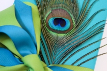 Tavanberg-peacock-gift-detail